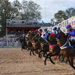 Hipódromo de San Isidro, el regreso de las carreras más consagradas